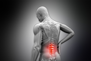 Individualized chiropractic assessment